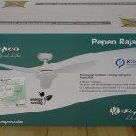 Pepeo energiesparender Deckenventilator Raja im Test